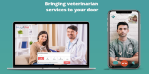 Digital veterinary services